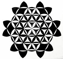 Hexagonal flower of life by mariquack