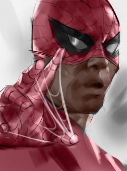 Spider-man by danielmchavez