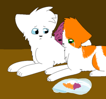 CloudTail and BrightHeart by terrorisnear