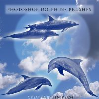 Photoshop dolphins brushes by feniksas4