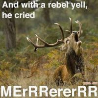 With a Rebel Yell by xbvbxlovex