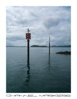 Channel Markers by chickitty