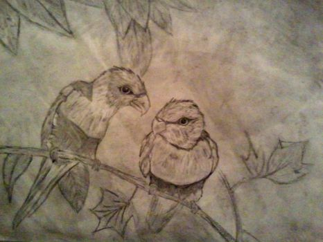 My Two Birds by SummerBaby01