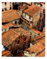 Above Lucca by rscorp