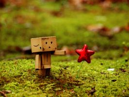Danbo: Red Star by T-2-M