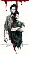 The Brothers Winchester by RohanElf