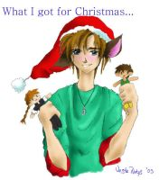 What I got for Christmas by VesteNotus