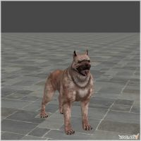 Dragon Age II: Mabari War Hound model by Berserker79
