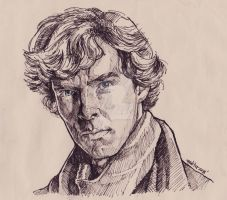 i am Sherlock by ermitanyongpalits