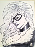 Black Cat Detroit Fanfare 2012 sketch by Dave-Acosta