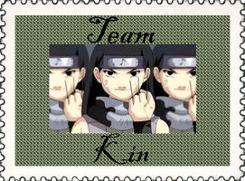 Team Kin by TeamShikaIno