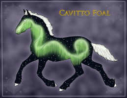 1438 Cavitto Foal Design by TheMs0kitty