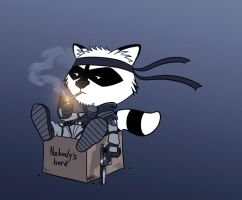 Solid Snake Raccoon by devilhs
