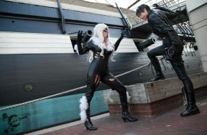 Black Cat vs. Catwoman by Nyxiie