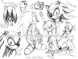 Sonic Pen Sketches by SailorMoonAndSonicX