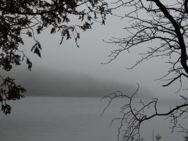 Fog Descends by RedRainFalls