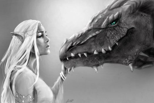 Lady Ilythia and Her Dragon by annbelle