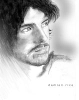 Damien Rice by dj-dreemz
