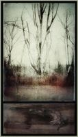iPhoneography,  Winter Kill III by Gerald-Bostock