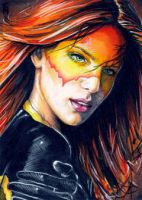 Firestar Sketch Card 3 by veripwolf