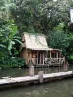 Swamp Hut by cynstock