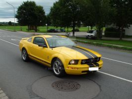 Ford Mustang V No. 1 by MU5T4N6