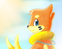 Sunny Outdoors by BuizelCream
