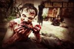 Wallpaper - The Walking Dead by ArtDesign-Graphics