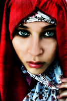 Little Red Riding Hijab by donvito62