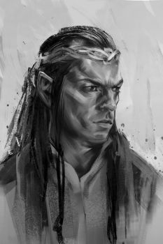 31/365 - Elrond by h1fey