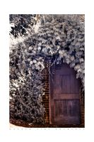 Garden Side Entrance IR HDR by UrbanRural-Photo