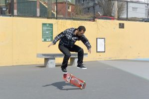 The Skateboarder Action Shot 2 by Miss-Tbones
