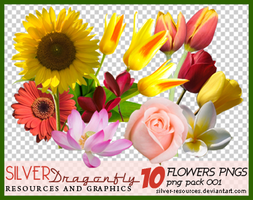 10 Flowers png's by Silver-resources