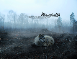 {{ scars from tomorrow by xXThe-Merciful-Scar