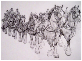 Budweiser Clydesdales by Jezarae