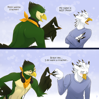 Com: Bird Jokes by DragginCat