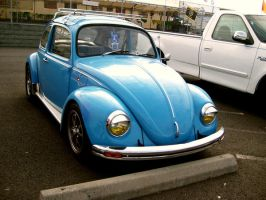 Blue Beetle - 02 by Zeds-Stock