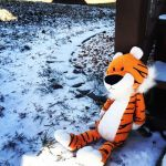 Hobbes out in the cold by NoriToy