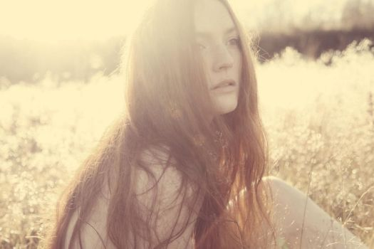 Autumn Sun II by annikenhannevik