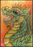 ACEO Dragon 06 by rachaelm5