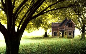 House in the woods by mystery-nicky