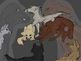 Quileute wolves by KaoriSkywalker