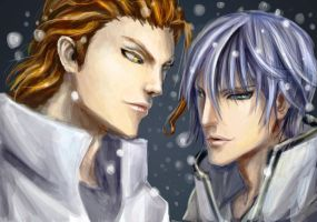 Aizen and Gin by Vitcer