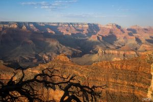 Grand Canyon 1 by MCL28