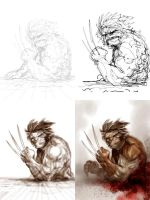 Wolverine Video by ARTofANT