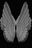 Stone Angel Wings by AshenSorrow