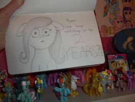 Happy Second Year, MLP FIM! by DragonsAndDreamscape