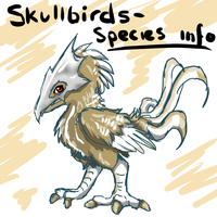 SkullBirds - Species Info by DarkTailz