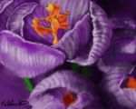 Purle Exotic Flower by MarthaPArt