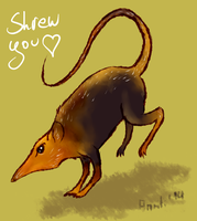 Kicking Shrew by anrili